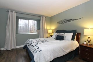 Photo 13: 3 23151 HANEY BYPASS in Maple Ridge: Cottonwood MR Townhouse for sale : MLS®# R2231499