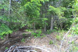 Photo 6: Lot 367 Fairview Road in Anglemont: North Shuswap, Anglemont Land Only for sale (Shuswap)  : MLS®# 10133376