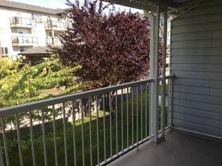 Photo 17: 238 32691 GARIBALDI Drive in Abbotsford: Home for sale : MLS®# F1314176