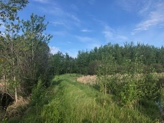 Photo 1: Range Road 233 TWP 520 NW: Rural Strathcona County Rural Land/Vacant Lot for sale : MLS®# E4179287