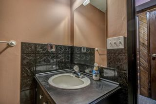 Photo 22: 4 Abergale Way NE in Calgary: Abbeydale Detached for sale : MLS®# A1068236