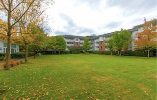 """Photo 14: 103 4723 DAWSON Street in Burnaby: Brentwood Park Condo for sale in """"Collage"""" (Burnaby North)  : MLS®# R2588618"""
