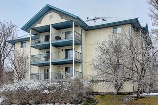 Photo 2: 110 11 Dover Point SE in Calgary: Dover Apartment for sale : MLS®# A1096781