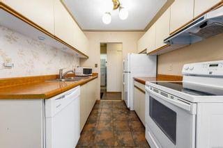 Photo 5: 205A 178 Back Rd in Courtenay: CV Courtenay East Condo for sale (Comox Valley)  : MLS®# 882029
