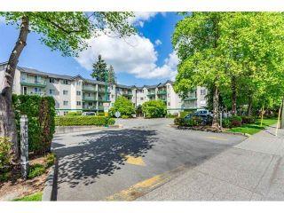 """Photo 25: 402 31771 PEARDONVILLE Road in Abbotsford: Abbotsford West Condo for sale in """"Breckenridge Estates"""" : MLS®# R2581794"""