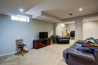 Photo 26: 113 Mt Sparrowhawk Place SE in Calgary: McKenzie Lake Detached for sale : MLS®# A1130042