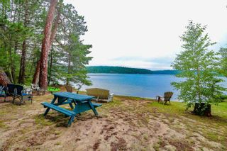 Photo 9: LK283 Summer Resort Location in Boys Township: Retail for sale : MLS®# TB212151