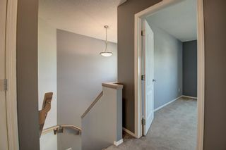 Photo 17: 168 Stonegate Close NW: Airdrie Detached for sale : MLS®# A1137488