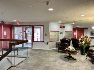 Photo 4: 203 17511 98A Avenue in Edmonton: Zone 20 Condo for sale : MLS®# E4224086