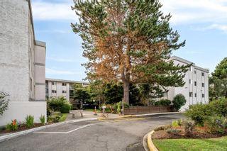 Photo 19: 211 3225 Eldon Pl in : SW Rudd Park Condo for sale (Saanich West)  : MLS®# 885953