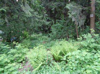 Photo 3: 71644 LEAF Lane in Hope: Hope Sunshine Valley Land for sale : MLS®# R2228648