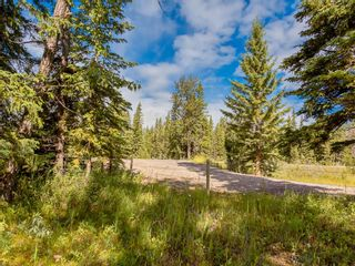 Photo 11: 20 34364 RANGE ROAD 42: Rural Mountain View County Land for sale : MLS®# A1017805