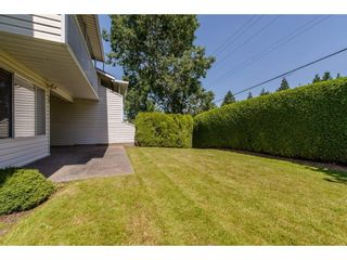 """Photo 20: 50 3054 TRAFALGAR Street in Abbotsford: Central Abbotsford Townhouse for sale in """"Whispering Pines"""" : MLS®# R2183313"""