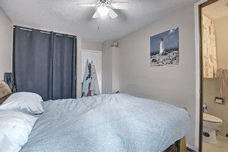 Photo 17: 367 Maitland Crescent NE in Calgary: Marlborough Park Detached for sale : MLS®# A1093291