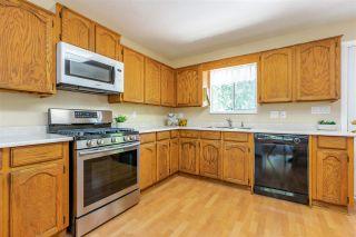 Photo 11: 20557 114 Avenue in Maple Ridge: Southwest Maple Ridge House for sale : MLS®# R2365484