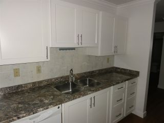 Photo 6: 2 20799 119 AVENUE in Maple Ridge: Southwest Maple Ridge Condo for sale : MLS®# R2516020