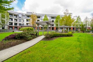 """Photo 11: 225 8880 202 Street in Langley: Walnut Grove Condo for sale in """"The Residences"""" : MLS®# R2396369"""