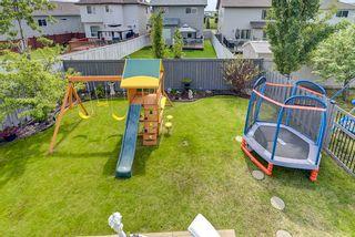 Photo 44: 3441 28 Street in Edmonton: Zone 30 House for sale : MLS®# E4248007