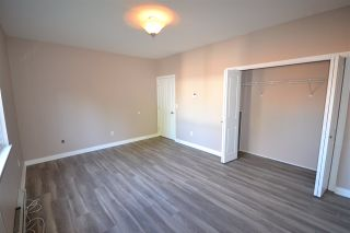 Photo 16: 20123 PATTERSON Avenue in Maple Ridge: Southwest Maple Ridge House for sale : MLS®# R2414530