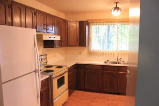Photo 15: 4 Shannon Close: Olds Detached for sale : MLS®# A1143116