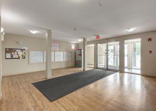 Photo 27: 327 355 Taralake Way NE in Calgary: Taradale Apartment for sale : MLS®# A1131617