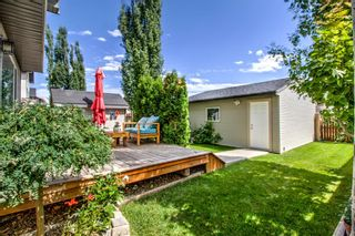 Photo 23: 254 CRAMOND Circle SE in Calgary: Cranston Detached for sale : MLS®# A1014365