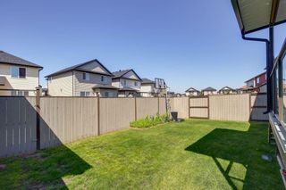 Photo 38: 8233 SADDLEBROOK Drive NE in Calgary: Saddle Ridge Detached for sale : MLS®# A1082147
