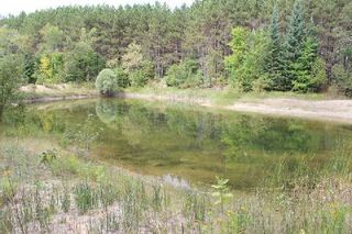 Photo 14: Lt 2 Hwy 121 in Kawartha Lakes: Rural Somerville Property for sale : MLS®# X2986227