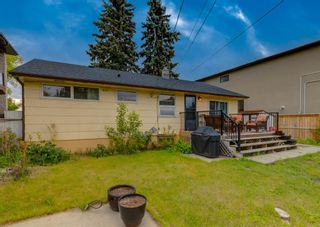 Photo 36: 3507 Spruce Drive SW in Calgary: Spruce Cliff Detached for sale : MLS®# A1117152
