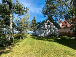 Photo 36: 330 CRYSTAL SPRINGS Close: Rural Wetaskiwin County House for sale : MLS®# E4260907