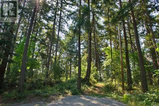 Main Photo: 19 Pirate Pl in Protection Island: Vacant Land for sale : MLS®# 881952