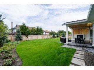 Photo 19: 5131 WILLIAMS Road in Richmond: Lackner House for sale : MLS®# V1098680