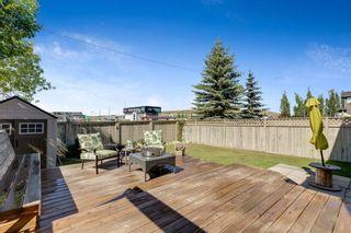 Photo 46: 137 Douglas Glen Manor SE in Calgary: Douglasdale/Glen Detached for sale : MLS®# A1116437