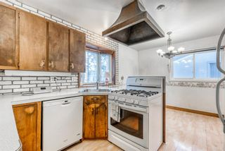 Photo 10: 345 Whitney Crescent SE in Calgary: Willow Park Detached for sale : MLS®# A1061580