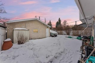 Photo 32: 3140 Blakiston Drive NW in Calgary: Brentwood Detached for sale : MLS®# A1071315