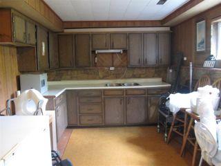 Photo 12: 11744 246 Street in Maple Ridge: Cottonwood MR House for sale : MLS®# R2374206