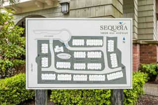 """Photo 39: 32 14838 61 Avenue in Surrey: Sullivan Station Townhouse for sale in """"SEQUOIA"""" : MLS®# R2586510"""