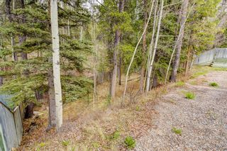 Photo 48: 228 Benchlands Terrace: Canmore Detached for sale : MLS®# A1082157