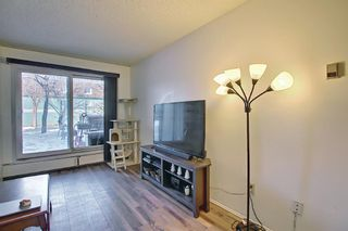 Photo 15: 4103, 315 Southampton Drive SW in Calgary: Southwood Apartment for sale : MLS®# A1072279