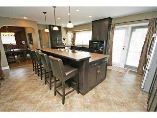 Photo 3: 476 LAKE TOPAZ Crescent SE in CALGARY: Lake Bonavista Residential Detached Single Family for sale (Calgary)  : MLS®# C3577762