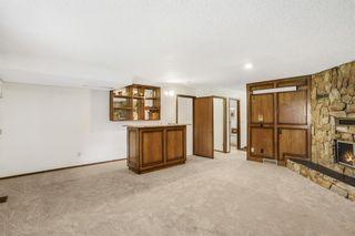 Photo 20: 4 Castlebury Way NE in Calgary: Castleridge Detached for sale : MLS®# A1146595