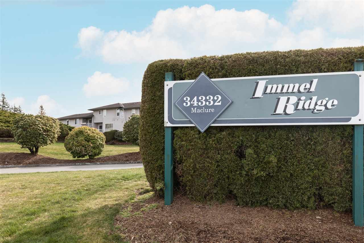 """Main Photo: 60 34332 MACLURE Road in Abbotsford: Central Abbotsford Townhouse for sale in """"IMMEL RIDGE"""" : MLS®# R2554947"""