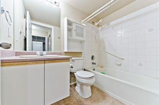 Photo 22: 103 11 Dover Point SE in Calgary: Dover Apartment for sale : MLS®# A1083330