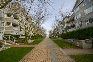 Photo 34: 102 5500 LYNAS LANE in The Hamptons: Riverdale RI Condo for sale ()  : MLS®# R2249699