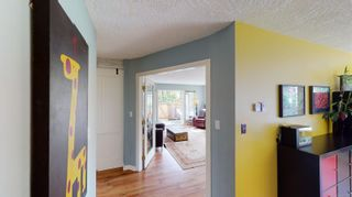 Photo 11: 1244 Glyn Rd in : SW Layritz House for sale (Saanich West)  : MLS®# 857203