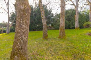 Photo 48: 1542 Oak Park Pl in : SE Cedar Hill House for sale (Saanich East)  : MLS®# 868891