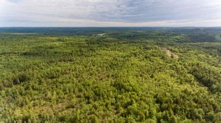Photo 17: Lots St. Phillips Street in Bridgewater: 405-Lunenburg County Vacant Land for sale (South Shore)  : MLS®# 202115973