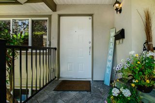 Photo 33: 21314 123 Avenue in Maple Ridge: West Central House for sale : MLS®# R2482033