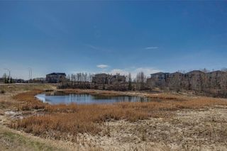 Photo 39: 9 ROCK LAKE Heights NW in Calgary: Rocky Ridge Detached for sale : MLS®# A1062307