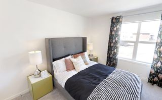 Photo 21: 17 Magnolia Terrace SE in Calgary: Mahogany Detached for sale : MLS®# A1147634